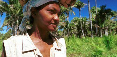 Mulher quebradeira de coco