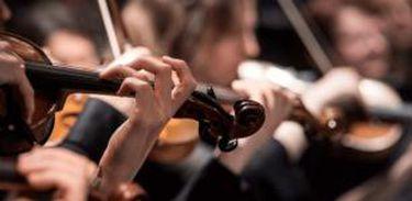 instrumento musical, concerto, orquestra, música clássica