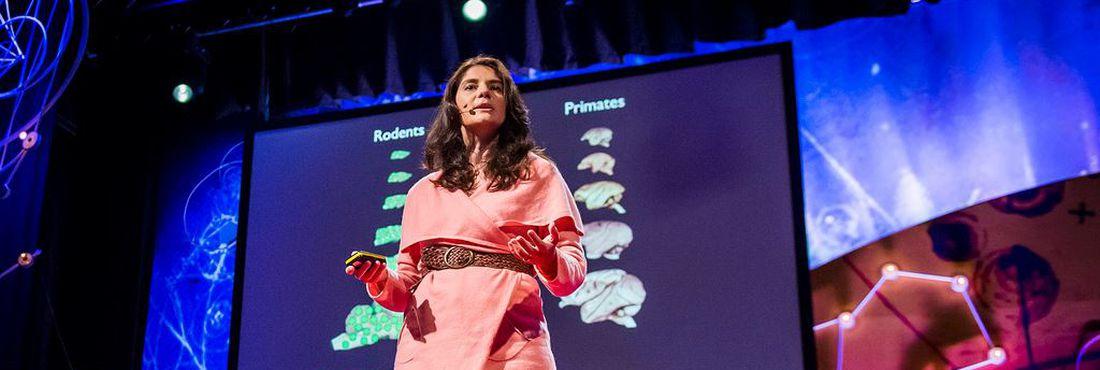A neurocientista Suzana Herculano-Houzel durante edição de conferência global do TED, em novembro de 2013
