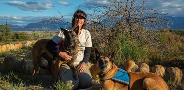 Cães da raça Pastor-belga-malinois com a treinadora