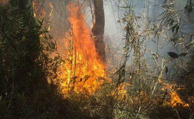 Incêndio no Parque Nacional da Serra dos Órgãos (Divulgação/Parnaso)