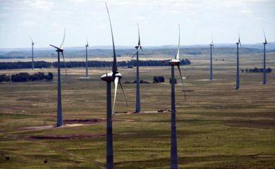 Investimentos na matriz eólica contribuem para a geração de energia limpa