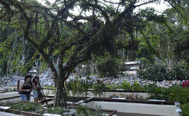 Jardim Botânico do Rio de Janeiro reabriu hoje (30) o Jardim Sensorial, espaço que oferece um conjunto de plantas com diferentes texturas e aromas, que os visitantes podem tocar e cheirar (Tomaz Silva/Agência Brasil)