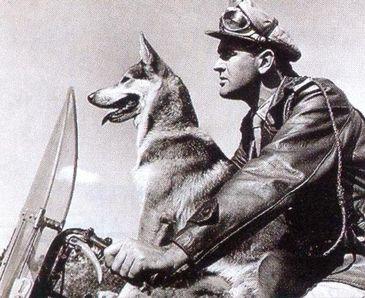 O Vigilante Rodoviário Carlos e o pastor alemão Lobo
