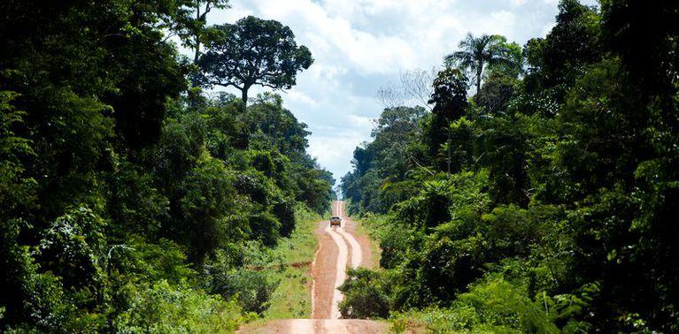 Amazônia Legal, Mato Grosso