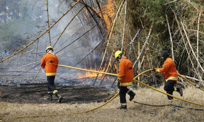 Brasília - Bombeiros combatem o fogo no Parque Ecológico Águas Claras (CBMDF/Divulgação)