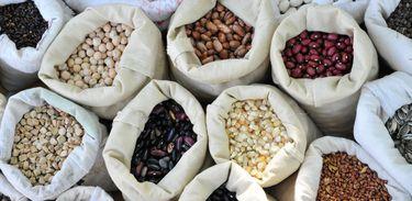 Sacas com vários espécies de sementes crioulas