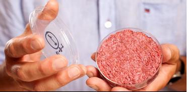 O que trava a produção de carne artificial?