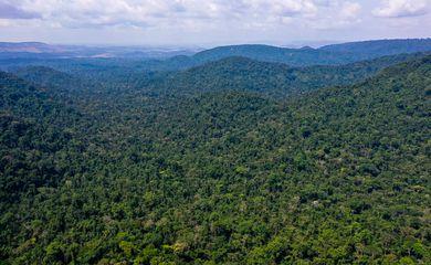 O vice-presidente da República, Hamilton Mourão, e os chefes de missões diplomáticas à Amazônia Oriental, fazem sobrevoo sobre a Floresta Nacional de Carajás e visita à mineradora Vale.