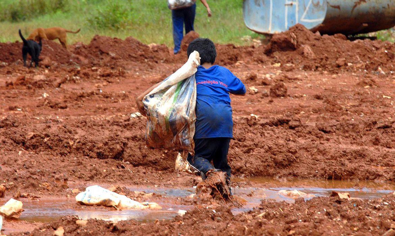 combate o Trabalho Infantil