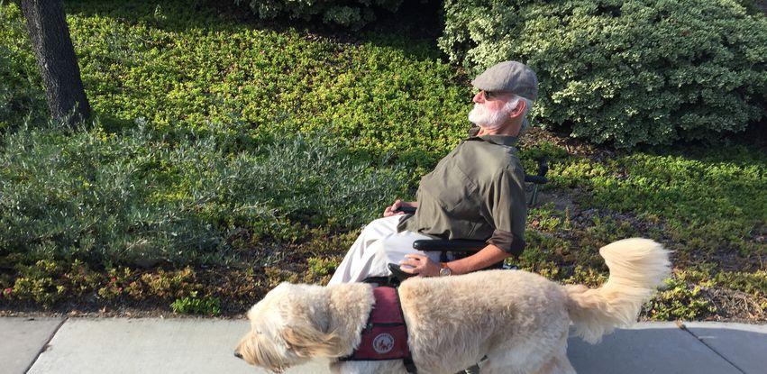Cães de Terapia acompanha Steve e Tahoe