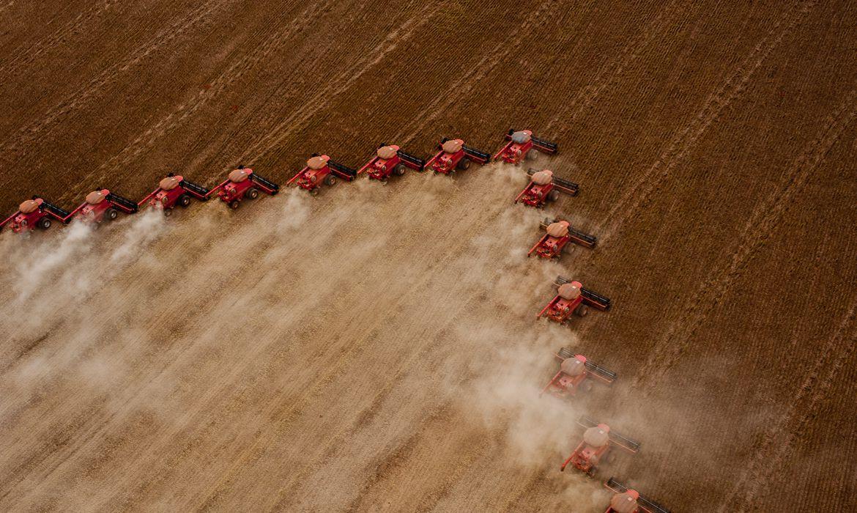 Plantação, Colheita de Soja