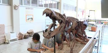 Crianças interagem com exposição no O Museu Exploratório de Ciência, em Campinas