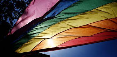 LGBTT, bandeira gay, parada gay, LGBT