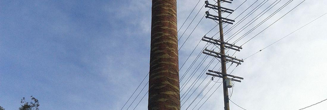 A antena de celular em formato de palmeira pode ser uma alternativa ao cumprimento da legislação quando às exigências da manutenção da paisagem urbana.