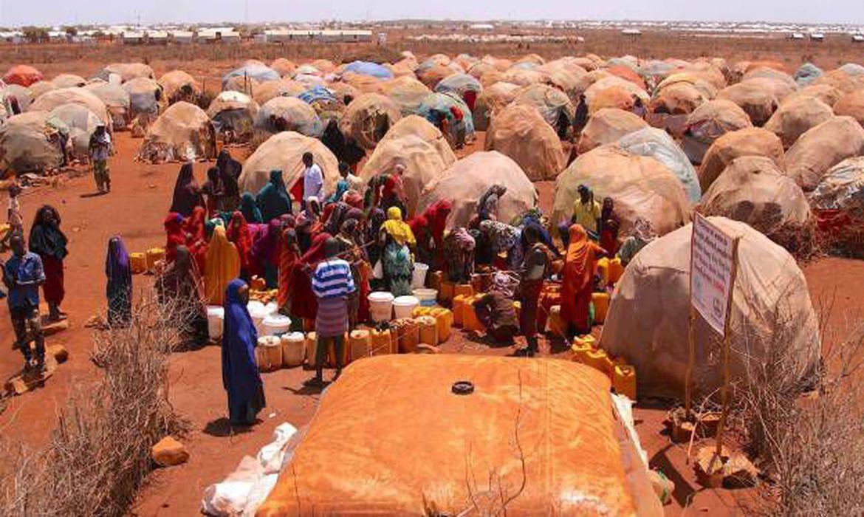 As ações para mitigar os efeitos da seca e da fome são a prioridade mais urgente na Somália, diz a ONU