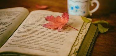 Leitura, livro