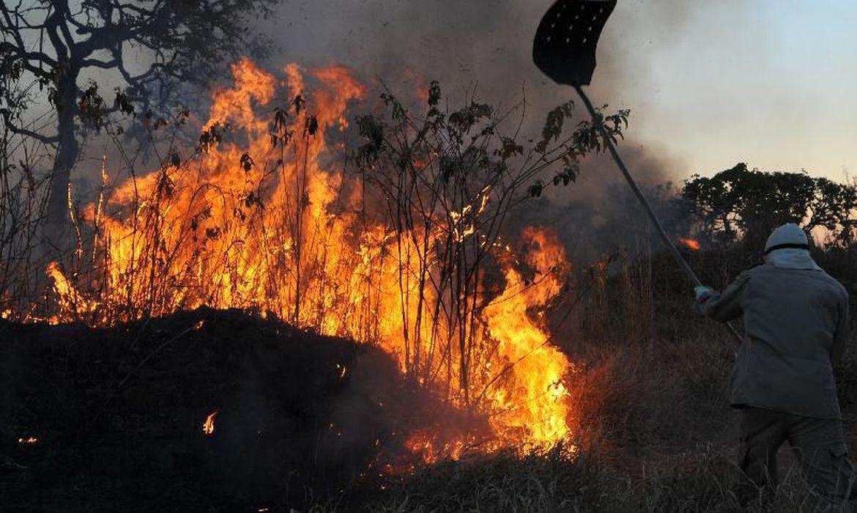 Incêndios florestais no DF