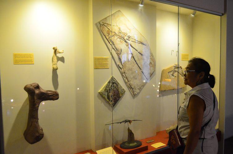 museu nacional, UFRJ, dinossauro