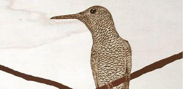 Detalhe de obra exposta na Galeria Evoé