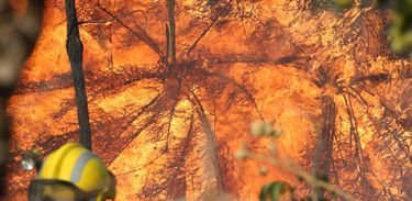 Incêndio no Parque Nacional de Brasília