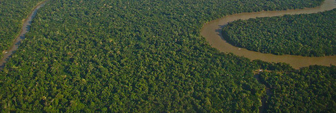 Inpe lança sistema para estimar emissões na Amazônia