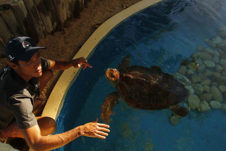 O biólogo Claudemar Santos, o Mazinho, nativo de Praia do Forte formado e empregado pelo Projeto Tamar, apresenta tartarugas marinhas protegidas e devolvidas ao oceano.