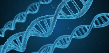 Estudo da UFRJ revela mecanismo de mutação de proteína que pode se tornar cancerígena