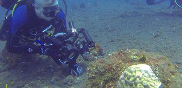 O principal objetivo de Fábio é a preservação dos seres marinhos