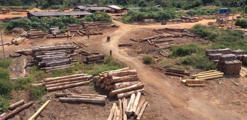 Madeireira fiscalizada em Nova Ubiratã, no Mato Grosso