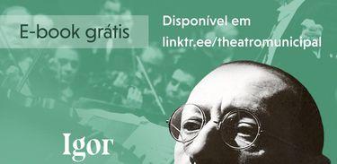 E-book Igor Stravinsky