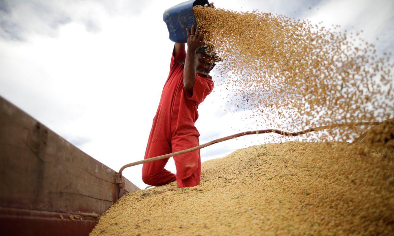 Trabalhador movimenta grãos de soja em Campos Lindos (TO)