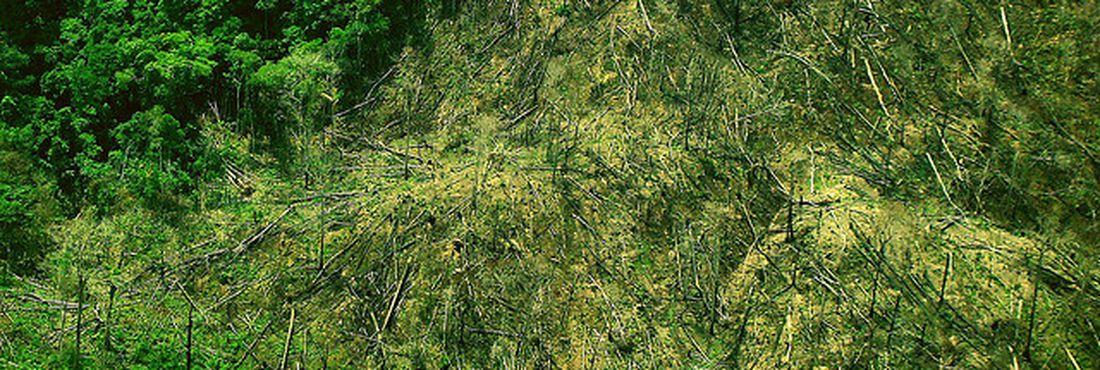 Imagem aérea de área desmatadaa