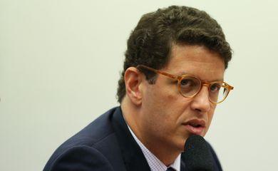 O ministro do Meio Ambiente, Ricardo Salles, participa de audiência pública, na Comissão de Agricultura. Pecuária, Abastecimento e Desenvolvimento Rural da Câmara dos Deputados