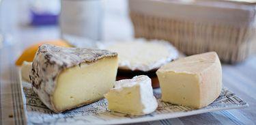 Ciência Alimentar mergulha no universo dos queijos