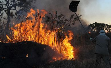 Incêndios florestais no DF