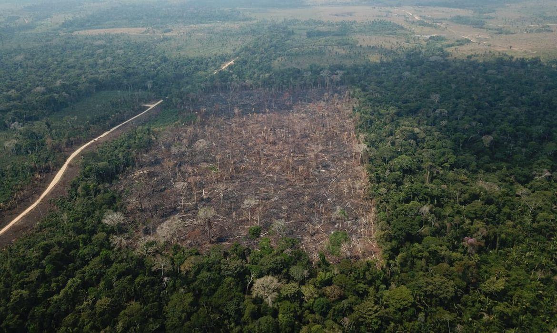 Operação de Garantia da Lei e da Ordem Verde Brasil sob a Coordenação da 17ª Brigada de Infantaria de Selva e com a participação de Órgãos Estaduais e Federais,  para combate a incêndios em vegetação e repressão a delitos ambientais