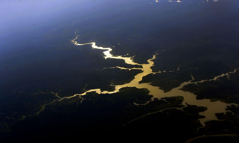 Vista aérea de floresta e rios da Amazônia