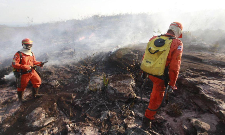 Brigadistas combatem o incêndio na Chapada Diamantina  (Mateus Pereira/GOVBA)