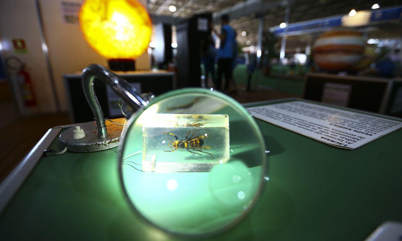 Edição presencial da 17ª Semana Nacional de Ciência e Tecnologia (SNCT).