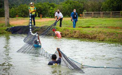 Hamilton Mourão, visita, o Projeto Integrado de Colonização (PIC) Bela Vista, em Manaus