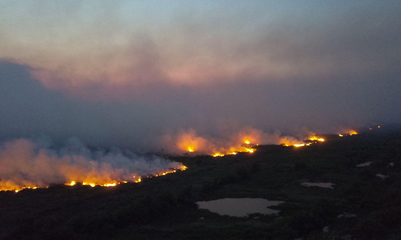queimada no Pantanal