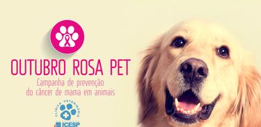 Campanha incentiva prevenção de câncer de mama em pets