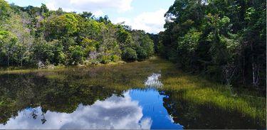 O parque compõe um corredor ecológico junto com o Parque Nacional do Monte Pascoal e o do Pau Brasil