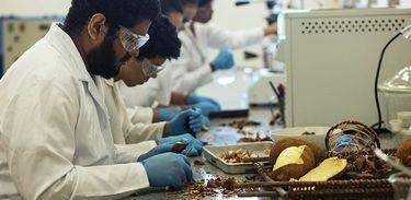 Laboratório de Óleos da Amazônia