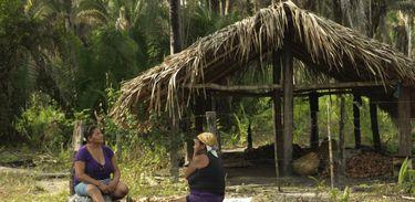 Quebradeiras de coco babacu