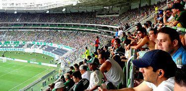Torcida Palmeiras, jogo, time, Brasil, torcida, campeonato,torcedores