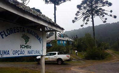 O ministro do Meio Ambiente, Ricardo Salles, participará da abertura do edital para concessão da Floresta Nacional de Canela nesta quinta-feira (6). O projeto integra a agenda de concessões do Ministério do Meio Ambiente, em parceria com o