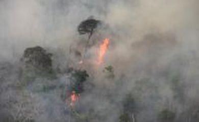 Incêndio atinge parte da Floresta Amazônica na Terra Indígena Arariboia, no município de Amarante, no sudoeste do Maranhão