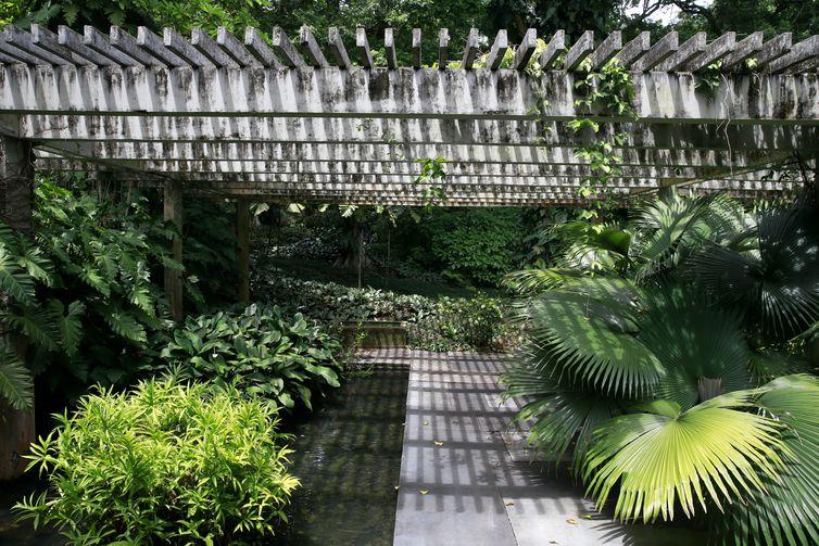 O Sítio Roberto Burle Marx, em Barra de Guaratiba, na zona oeste do Rio de Janeiro, se prepara para a nova fase da candidatura do local a Patrimônio Mundial pela Unesco.